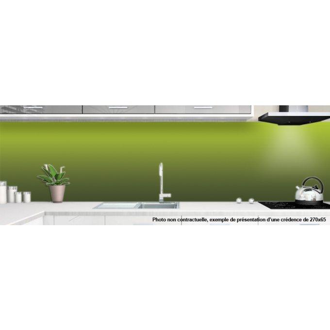 Cr dence cuisine couleur vert avec d grad impression sur alu ou plexi - Credence design impression ...